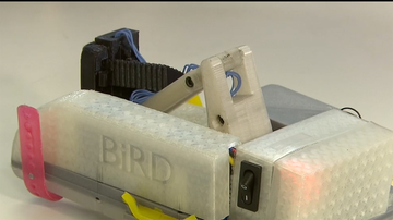 New device giving Parkinson's 'The Bird'