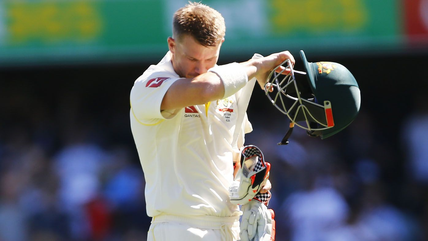 David Warner the biggest problem facing Justin Langer and Australian cricket: Craddock