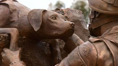 <p>The bronze War Memorial sculpture depicts a handler and his dog, Melbourne sculptor Ewen Coates said of his work.</p>