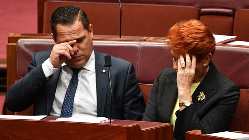 Remaining One Nation senators Peter Georgiou and Pauline Hanson. (AAP)