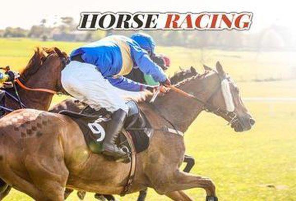 Seven's Horse Racing