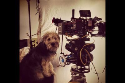 """@E_L_James: """"Dusty... our hairy DP."""""""