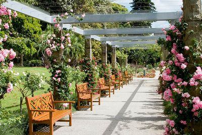<strong>Rose Garden Pavilion, Sydney</strong>