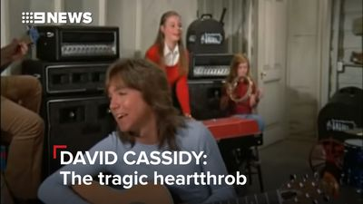 David Cassidy accused of sexually assaulting Samantha Fox: 'I shouted: Get off me, David!'