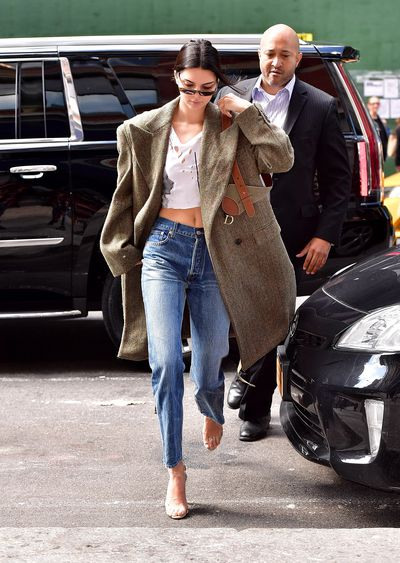 Kendall Jenner with a Dior Saddle Bag