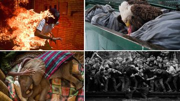 World press photo contest winners announced