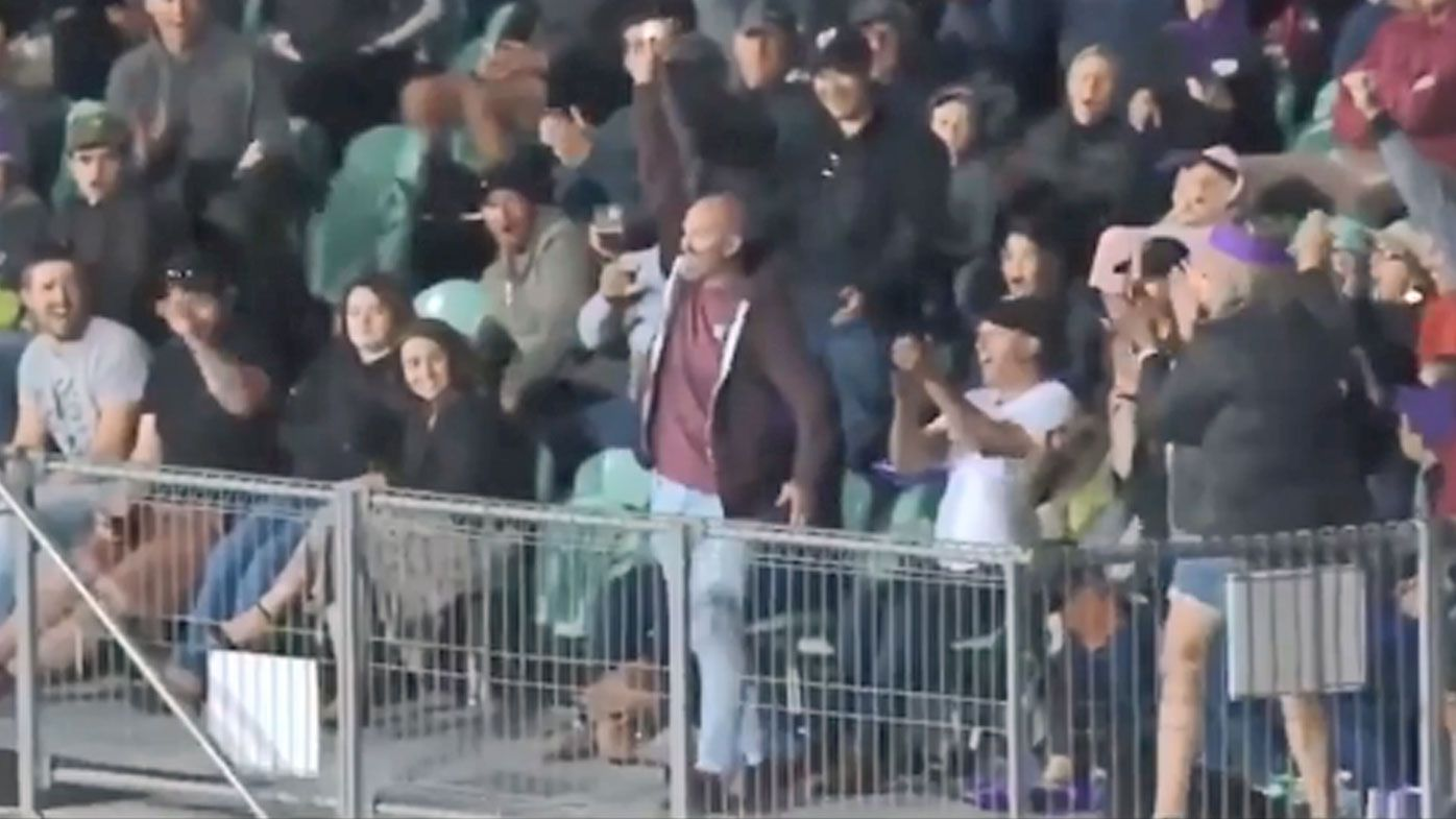 Crowd member takes cracking catch