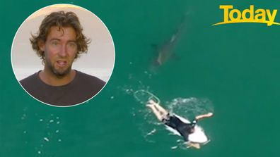 Pro surfer had 'weird vibes' as shark stalked him in northern NSW