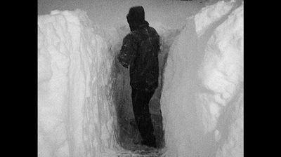 NFL hockey pro Jay McKee shoveling snow. (JayMcKee74 - Twitter)