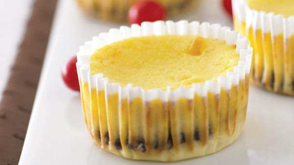 Mini jaffa cheesecakes