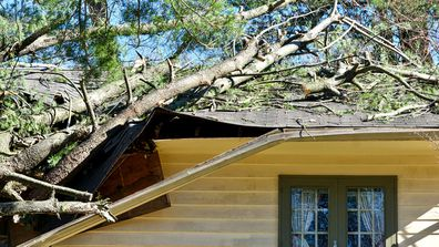 10 tips for storm-proofing your home before wild weather hits