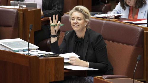 Bridget McKenzie is facing pressure over how she handed out funding for sports clubs.