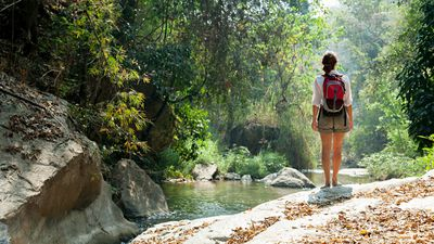 30 minutes a week out in nature is a proven stress antidote