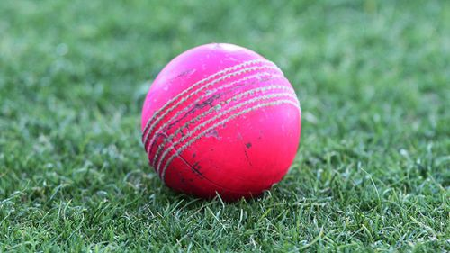 Cricket Australia believes the pink ball will survive the rigours of Test cricket. (AAP)