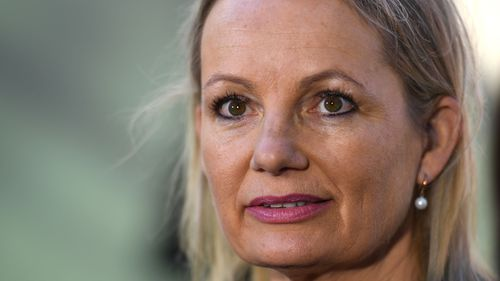 Sussan Ley today introduced a private member's bill to Parliament. (AAP)