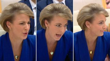 'Deny, deny, deny': Michaelia Cash on AWU raids