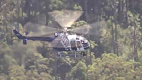 A helicopter was called in to search the park. (9NEWS)