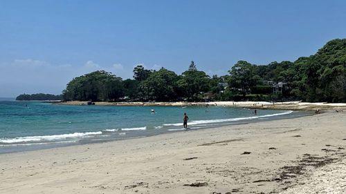 A woman has been mauled to death on a Jervis Bay beach.