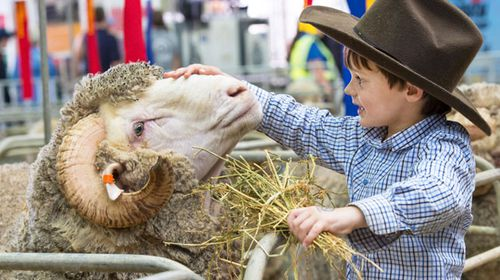 Sydney's Easter Show opens its gates