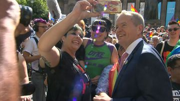 'Australia is ready for marriage equality': Shorten