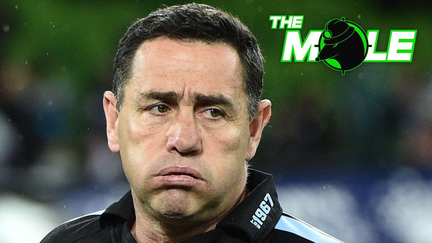 The Mole: Shane Flanagan finished at Cronulla Sharks if NRL imposes ban