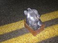 FBI release chilling picture of teddy bear bomb left on roadside by South Carolina man
