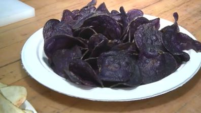 Michigan State University researchers have created a purple potato and turned it into what they're calling 'blueberry chips' 4
