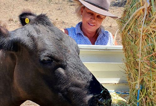 Cherilyn Lowe, said she was forced to send her cattle off twice to agistment farms in a bid to keep them alive during the drought.
