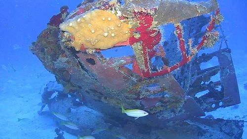 Tail section from an SBD-5 Dauntless dive bomber resting on the floor of Truk Lagoon.