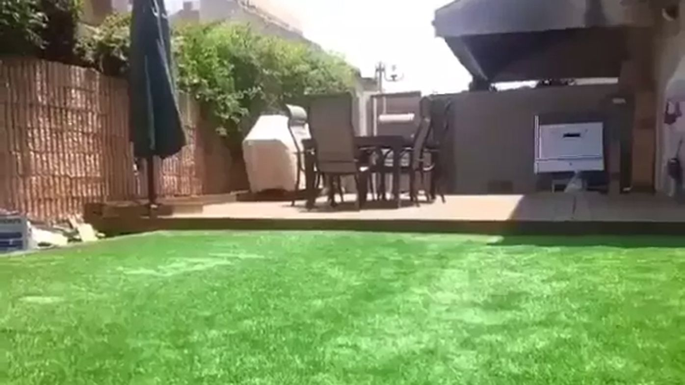 hidden pool in backyard