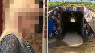 Aunt describes teen's 'confession' to stabbing girl, 12, in tunnel