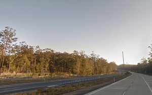 Man killed, two injured after tree falls on car at NSW Mid North Coast rest area
