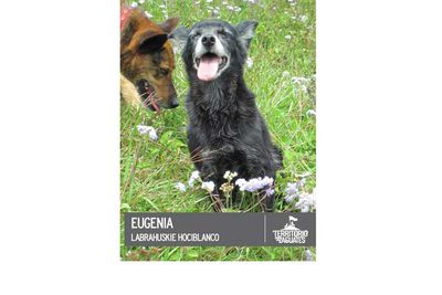 Eugenia's a bit sleepy here.