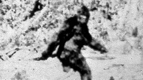 FBI tested alleged potential Bigfoot fur in 1970s
