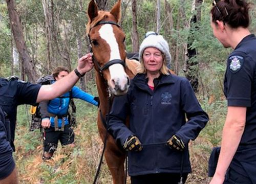 Narelle Davies, 52, appears to be in good health after being found alive. (Eliza Rugg / 9NEWS)