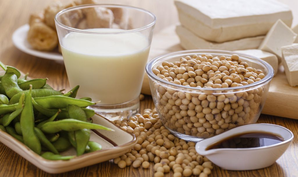 Image result for Soy