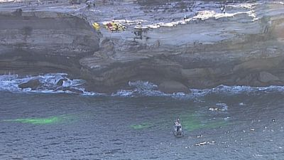 Teen dead after cliff fall at whale watching area