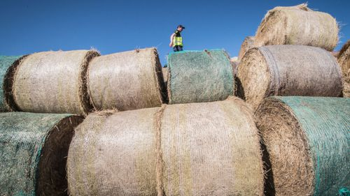 A 2018 photo of hay bales being delivered to drought-stricken Golburn, NSW.