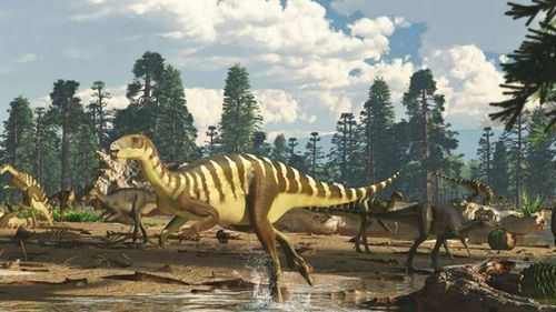 New wallaby-like dinosaur found in Victoria