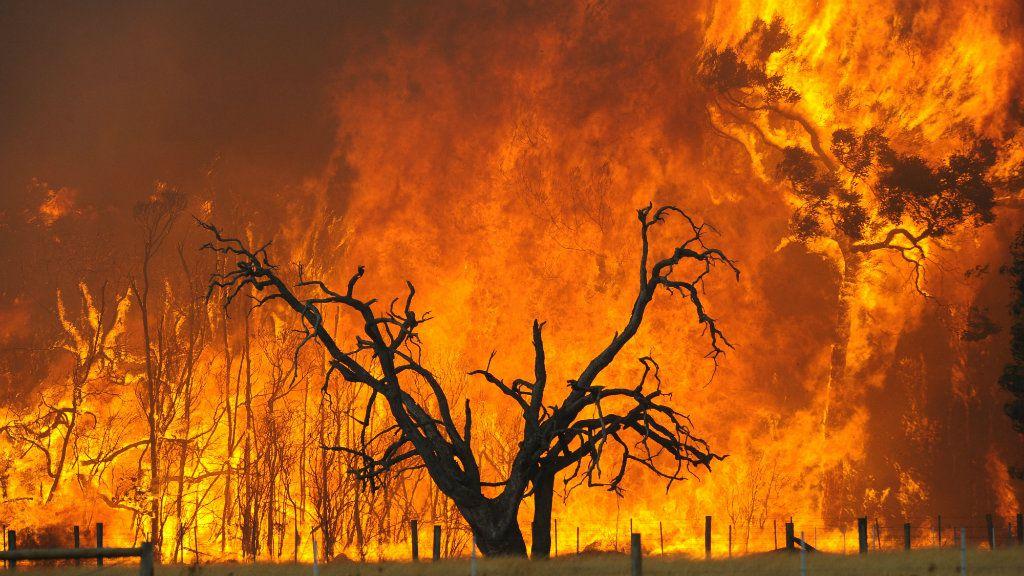 The Black Saturday bushfires killed 173 people. (AAP)