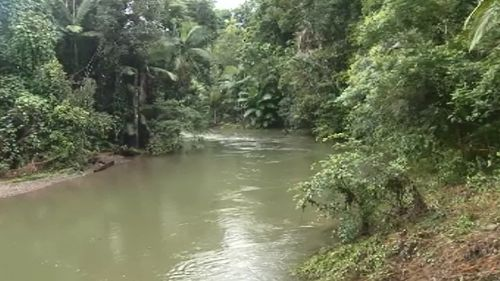 Traps will be placed in nearby Cooper Creek. (9NEWS)