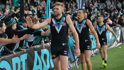 <strong>5. Port Adelaide Power</strong>