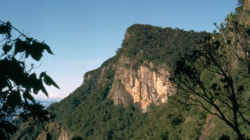 Dutch honeymooner becomes first person to survive fall from 1200m cliff in Sri Lanka