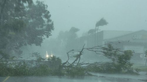 Darwin was devastated by Cyclone Marcus last weekend.