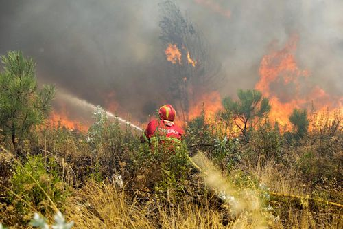 Portugal wildfires: 1800 firefighters battle blazes – Europe news