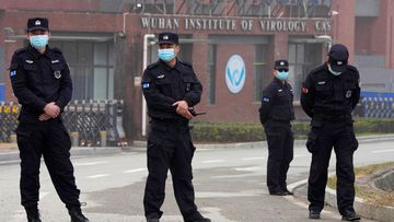 Wuhan researchers 'fell ill in 2019' in new detail on pandemic origins