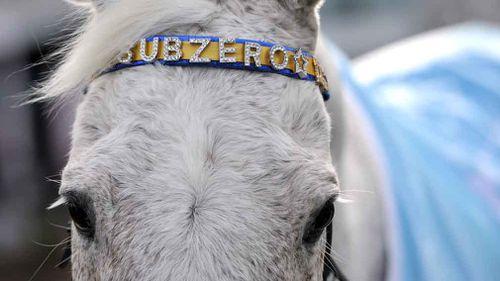 Subzero turned 29 yesterday. (AAP)