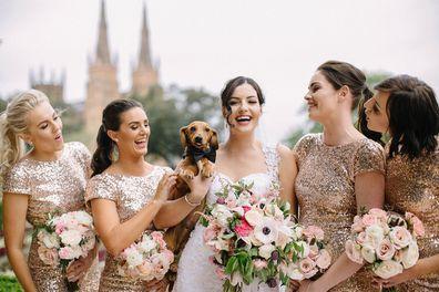 Jodie and Joss Dog Wedding Hunter