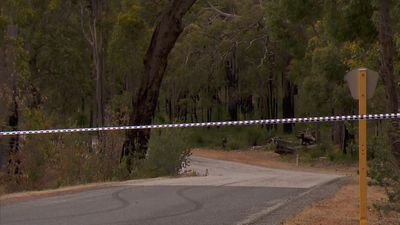 Homicide detectives on scene after body found in bushland