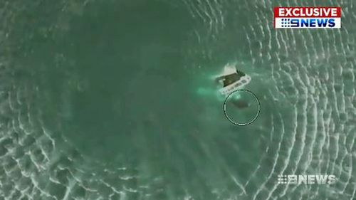 Newcastle fishermen rescued after hooking two sharks